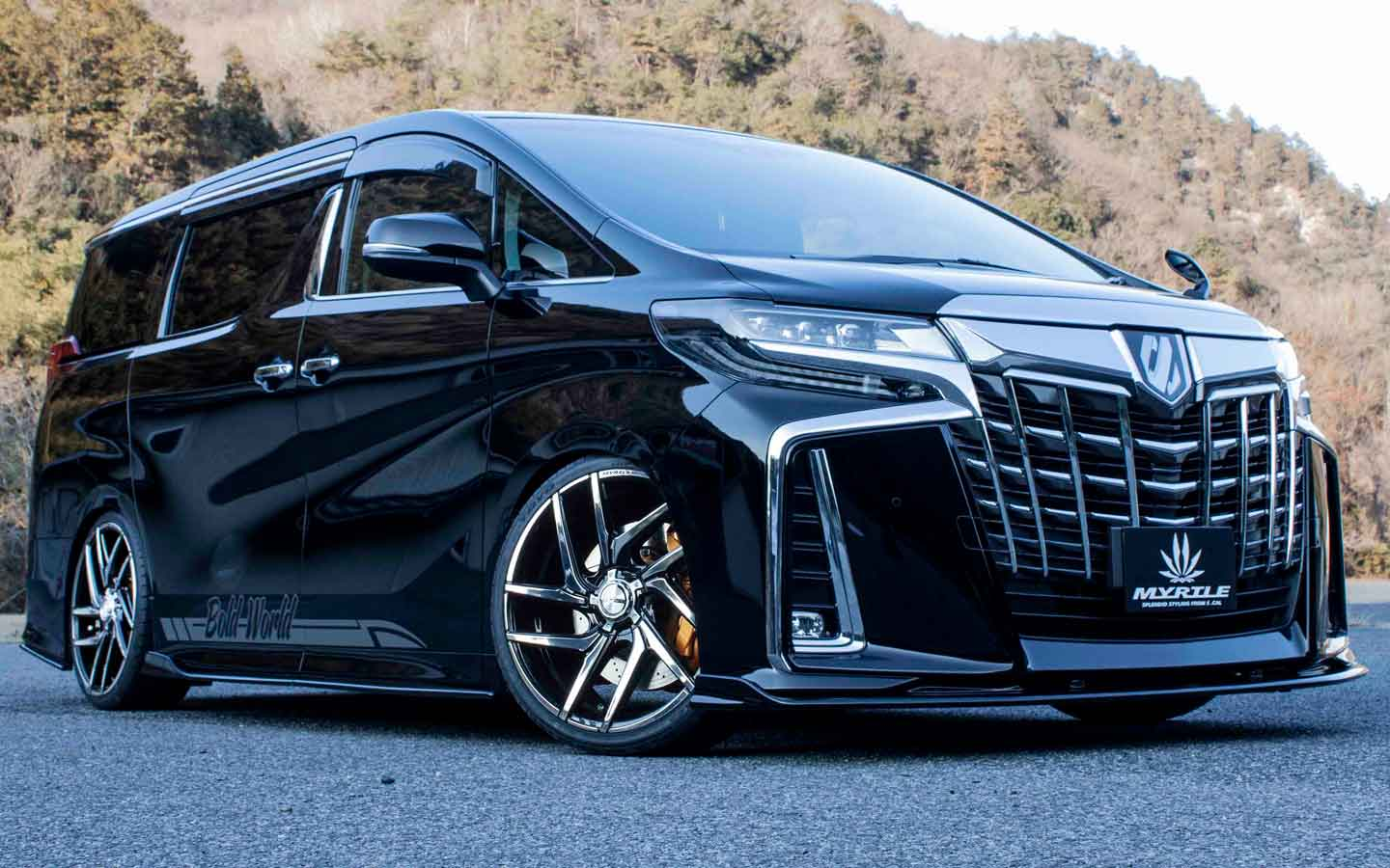 LUCAS [BLACK METALCOAT] (attached to ALPHARD)